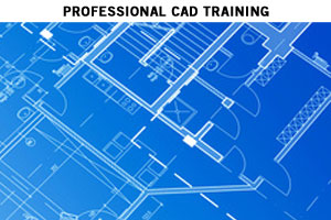 Manuals CADD BIM CIP